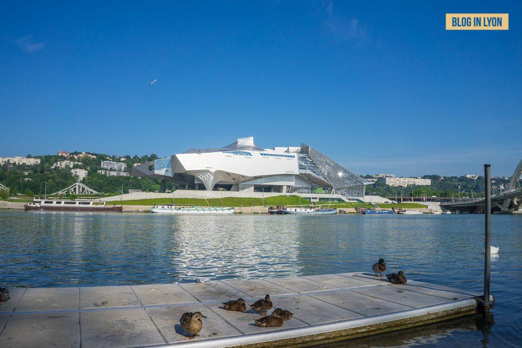 Visiter Lyon Fresques et murs peints - Musée des Confluences   Blog In Lyon